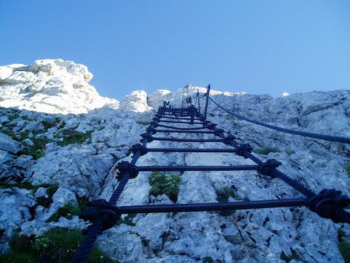 Looking up Pipans ladder