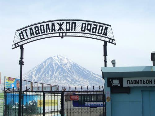 Koryaksky volcano seen from Petropavlovsk-Kamchatsky Airport, Yelizovo.