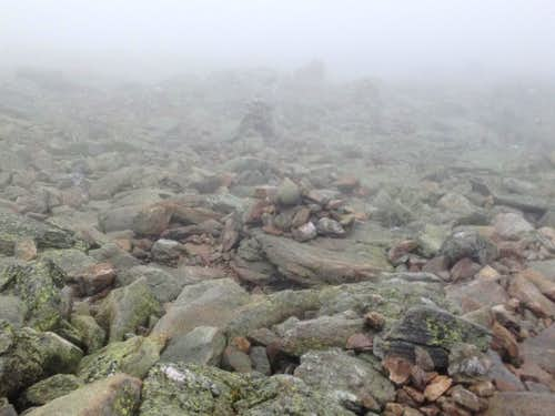 Foggy Trail, Mt Washington
