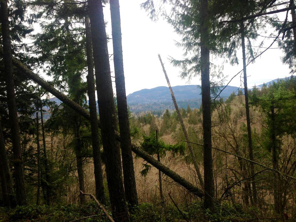 Squak Mountain