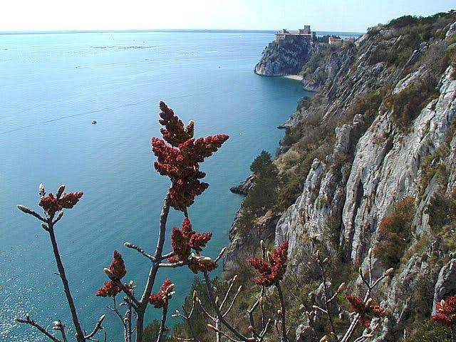 The cliffs of Devin from the...
