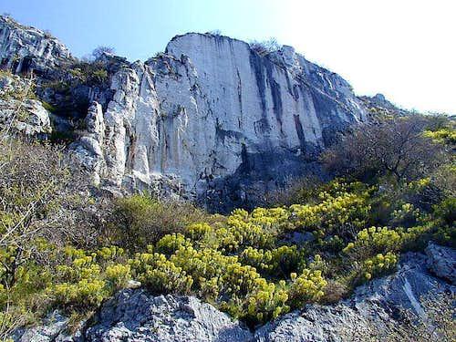 The cliffs above Trieste/Trst.