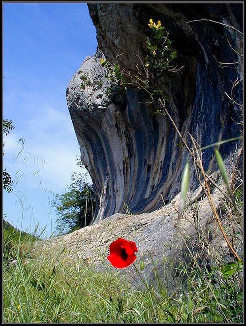 The limestone cliffs near...