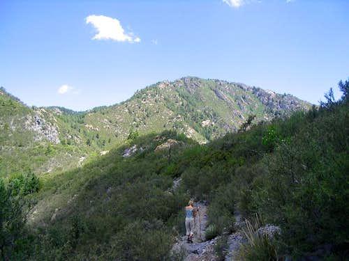 Miller Peak AZ