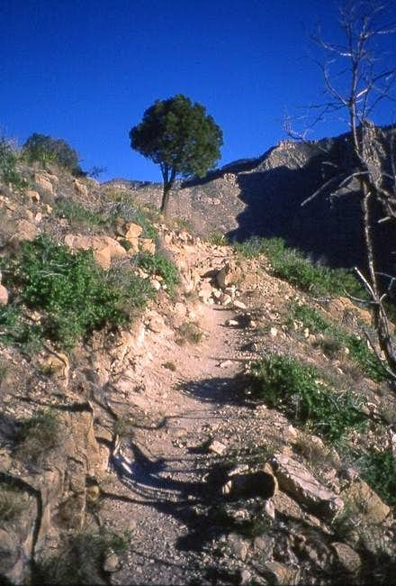 The Guadalupe Peak Trail as...