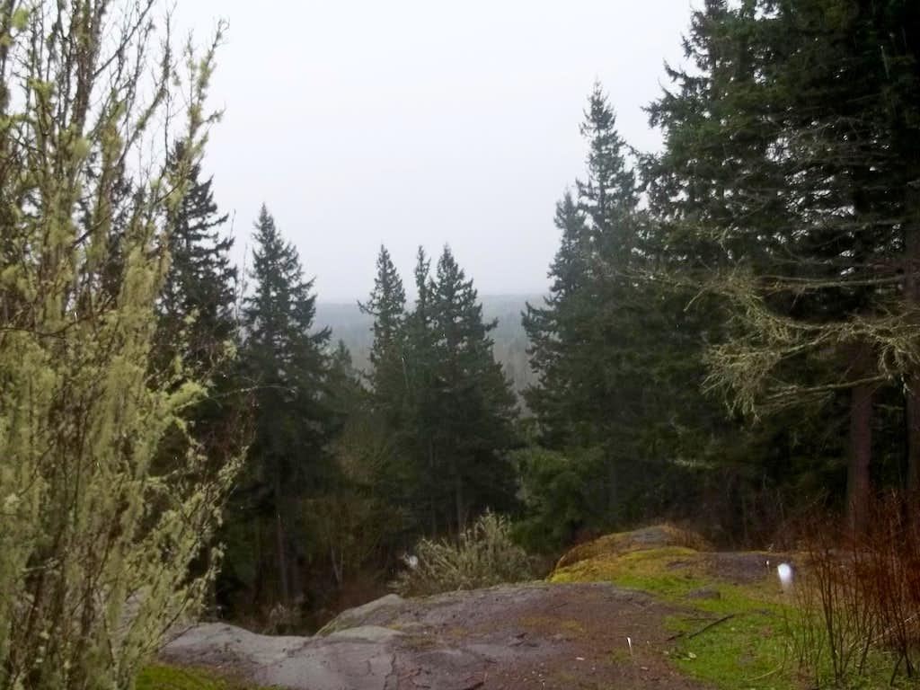 View of the rain