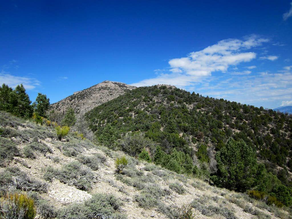 Blue Eagle Mountain