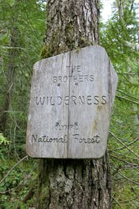 The Brothers Wilderness