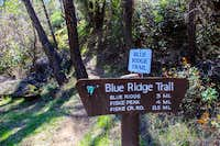 Sign at Fiske Peak trail head