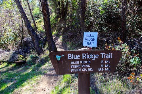 Sign at Fiske Peak trail head