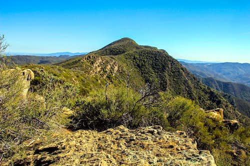 Fiske Peak from point 2,631'