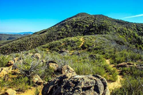Blue Ridge Trail to Fiske Peak