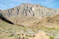 Moapa Peak from the...