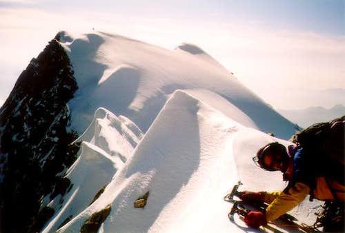 Walker peak from Whymper peak...
