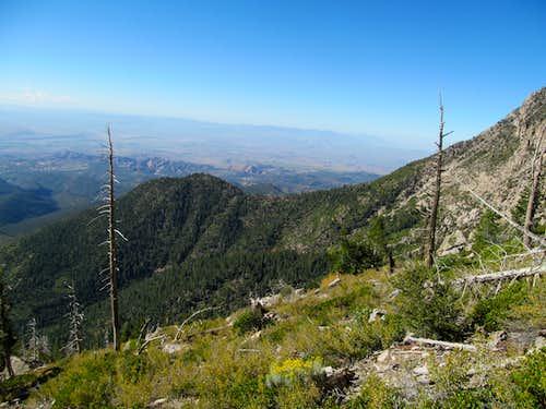 views near the ridge crest