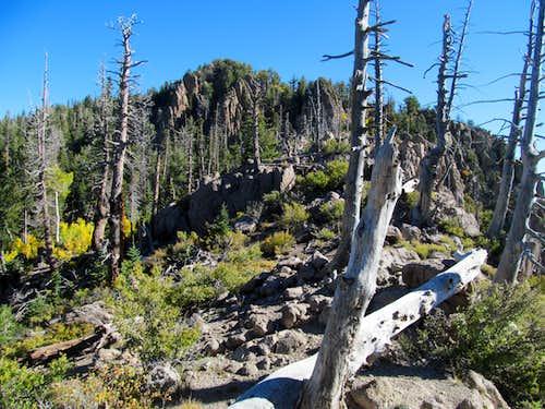 outcrop near the ridge crest