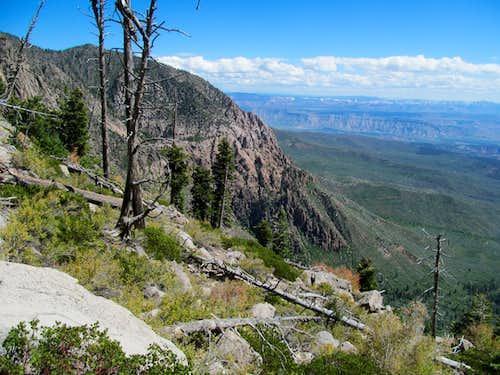 Zion area along the descent
