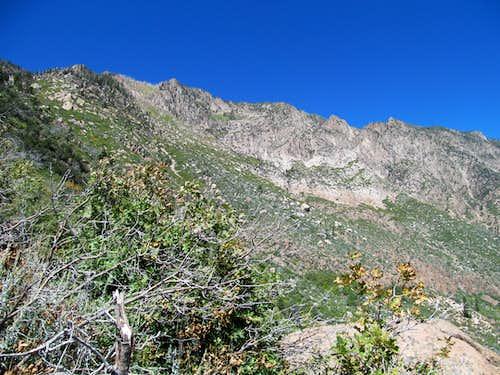 Pine Valley Range