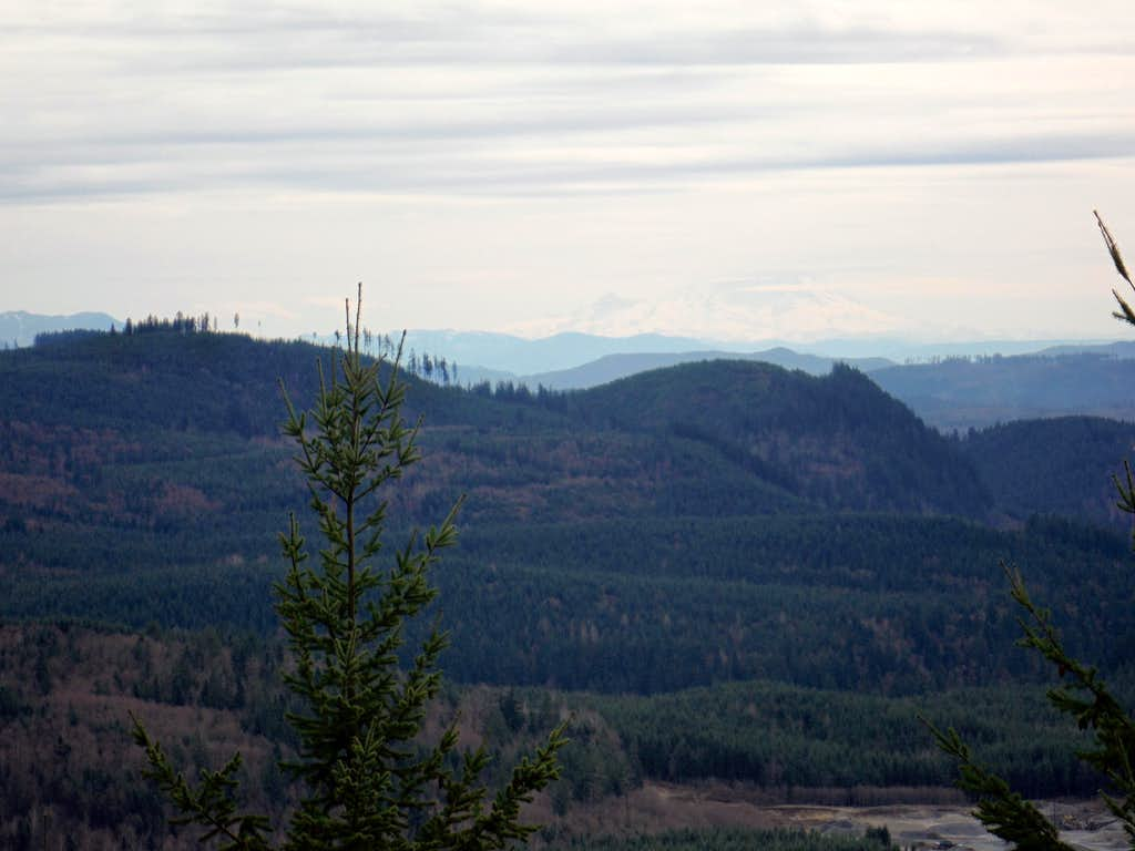 The view south toward Rainier