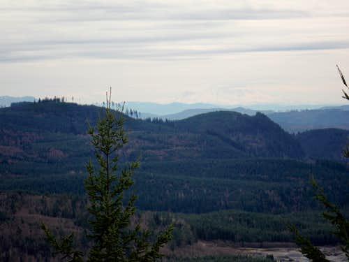The view south toward Rainier
