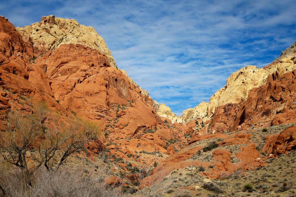 Calico Tank Peak and Drainage to Saddle