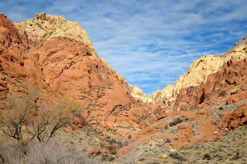 Scramble from Calico Basin