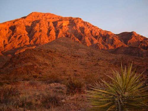 Moapa Peak at sunrise from...