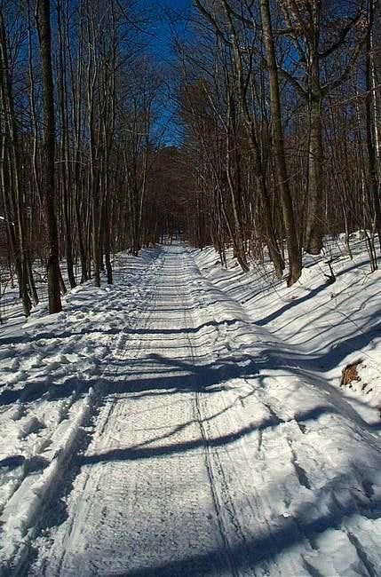 A nice winter shot through...