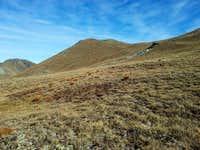 slopes beneath the summit