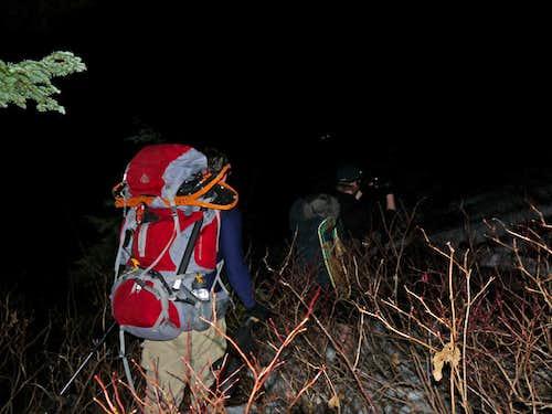 Heading through the Slide Alder at Night
