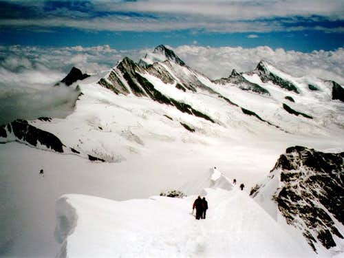 Finsterarhorn from Monch ridge