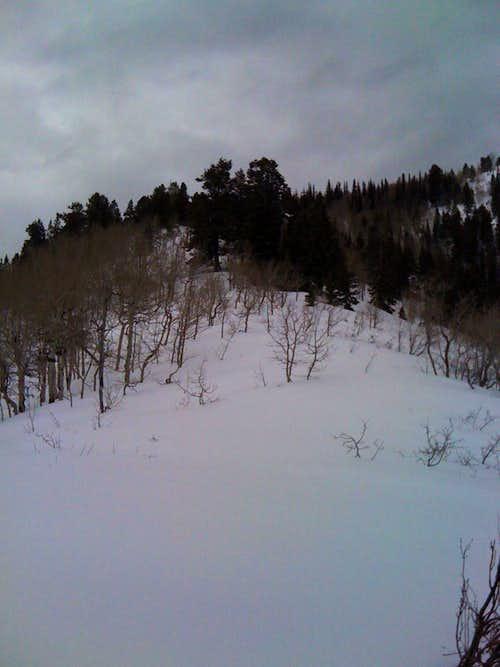 Maple Mountain North Ridge