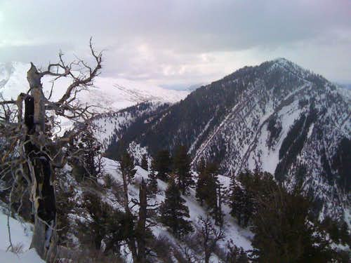 Buckley Mountain
