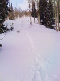 North Ridge of Maple Mountain
