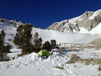 Camp at tree line