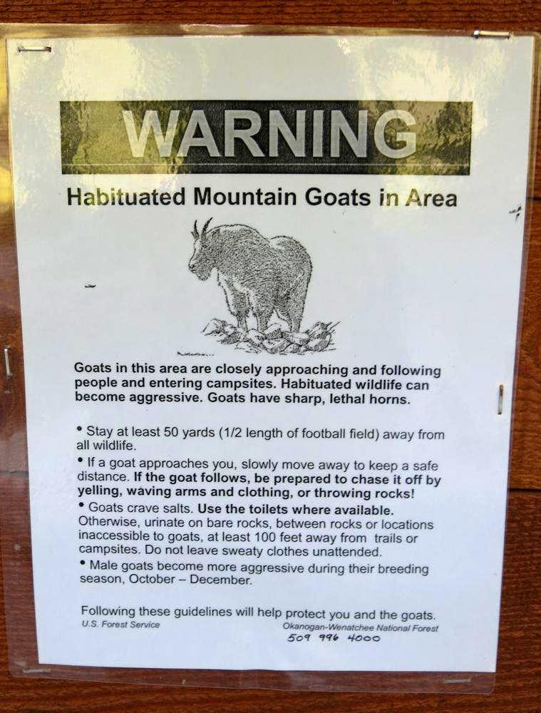 Black Peak Mountain Goat Warning