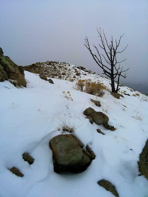 Stringham Peak 6374