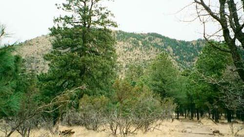 Mt. Elden from the bottom of...