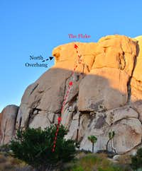 Joshua Tree Memories. Going out of your comfort zone can have interesting consequences!