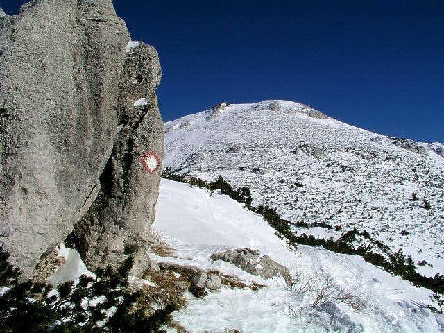The summit of Sneznik....