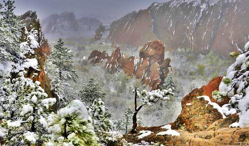Spring(winter) snow storm.