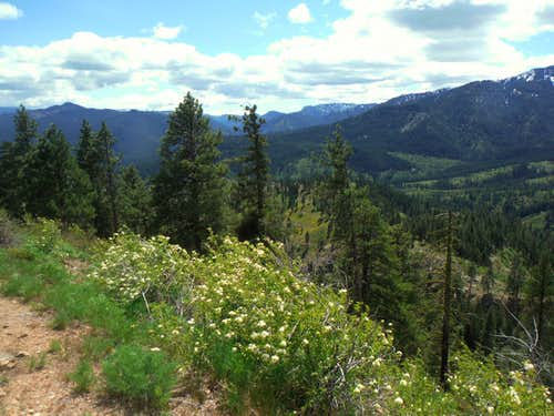 Looking toward Blewett Pass
