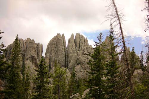 Black Hills Needles