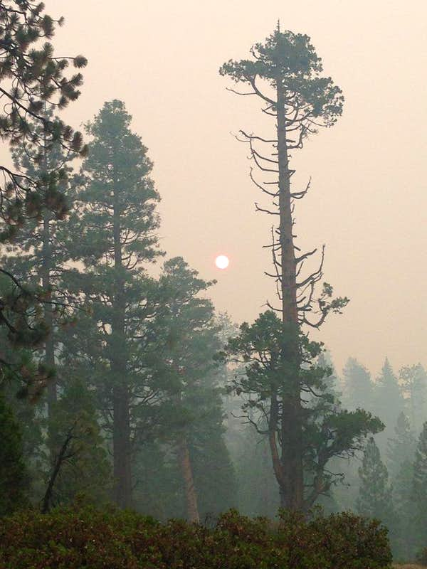 Smoke so thick you could look straight at the sun