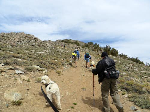 Heading up the final rocky stretch to the summit of Corey Peak