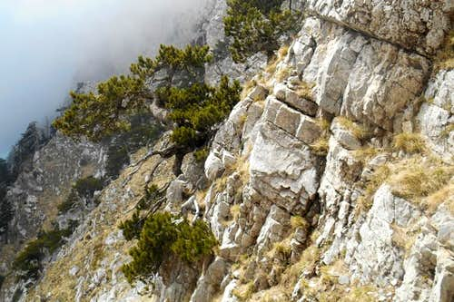 Rock face on 'Via Luzzo'