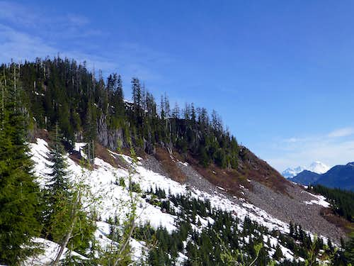 McGillicuddys Peak summit from SE