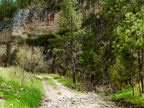Canyon Road & Streambed