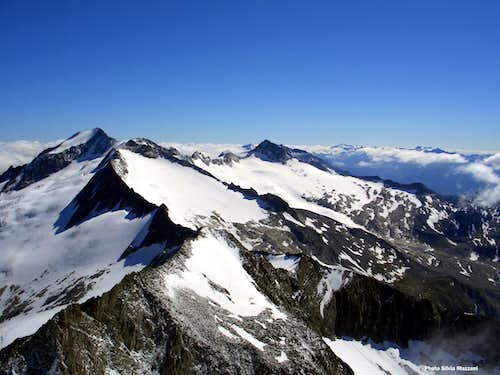 The Zillertal Alps from the summit of Punta Bianca