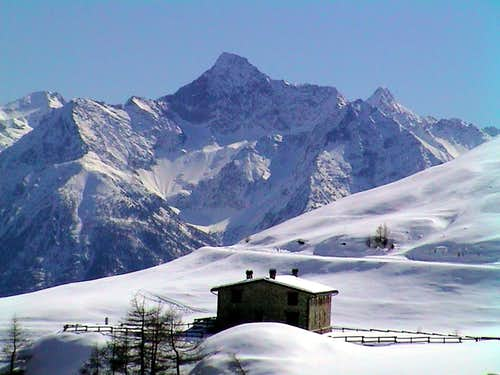 77 North Emilius Group going to Ansermin Alp 2002